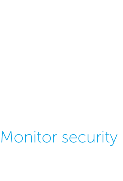 Monitor Security